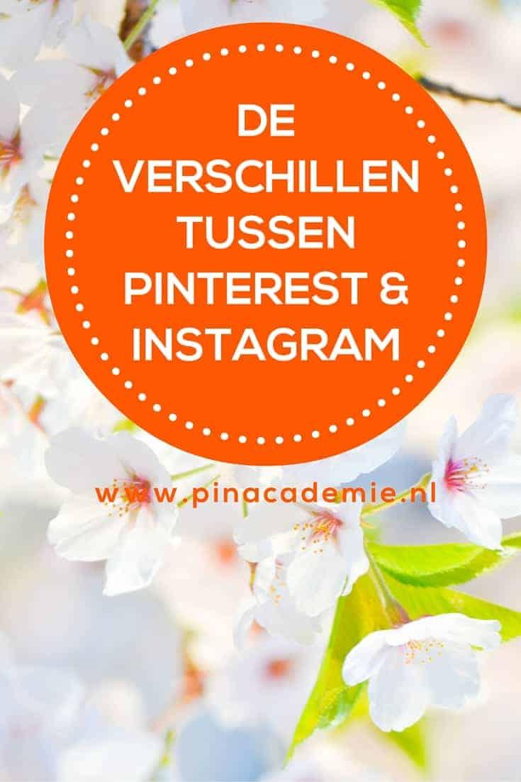 Wat zijn nu precies de verschillen tussen Pinterest en Instagram en wat werkt het beste voor bedrijf. Lees meer op www.pinacademie.nl